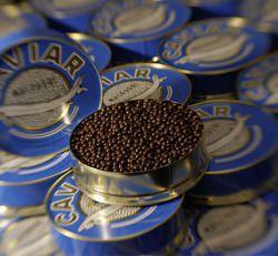 Schokolade Kaviar © Vincent Becker