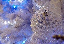 Weihnachten Luxus by Paul Davidson - Frohe Weihnachten und ein gutes neues Jahr!