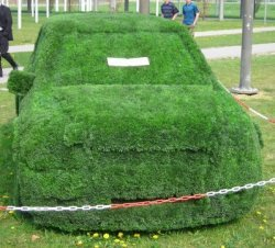 Gras Auto by piqs, Fischkopp