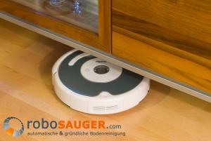 "robo 02 - Das Roboterputzmädchen ""Roomba"": lupenrein & klein"