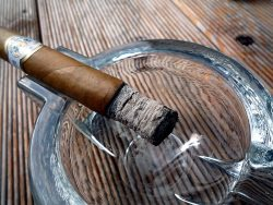 Zigarre by wikimedia Langinger - Plasencia Reserva Organica: Zigarre aus biologischem Anbau
