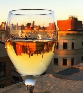 Bild 1 268x300 - Besondere Weine aus Österreich