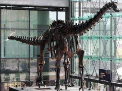 Dinosaurier by wikimedia Alexander Hüsing - Böker Manufaktur: Dino-Taschenmesser