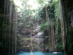 Cenote by wikimedia Dmadeo - Restaurant Alux auf Yucatàn: Speisen in einer alten Höhle der Maya