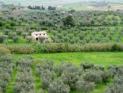 Toscana by wikimedia Alejo2083 - Castello di Vicarello: Ein Kochkurs in der Toscana
