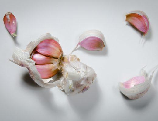 LasPedroneras garlic knoblauch bester der welt teuerster 520x400 - Violetter Knoblauch aus Las Pedroñeras: Der beste der Welt!