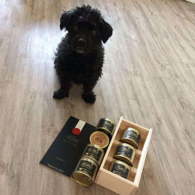 IMG 8528 e1496222650994 640x640 - CHAMPINSCHER – Luxusfutter für den Hund im Test