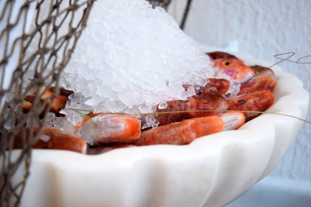 rotbarbe fisch rote meerbarbe zubereitung kochen 1024x683 - Rotbarbe - Edelfisch mit feinstem Aroma. Geschichte & Rezepte für die edle Meerbarbe